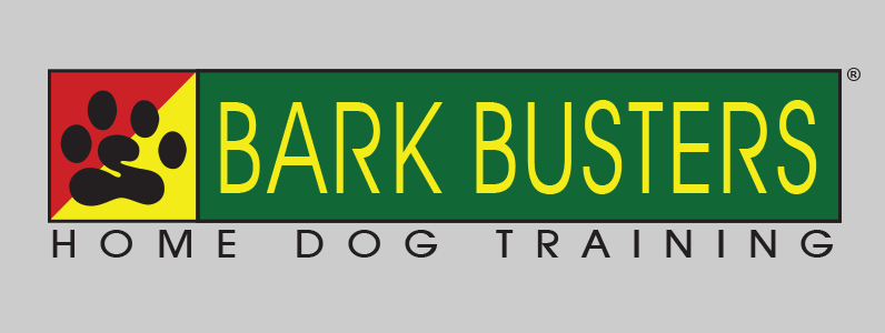 Bark Busters Home Dog Training Collar
